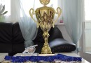 8 ngày trước giờ bóng lăn của giải bóng đá sinh viên Việt Nam tại châu Âu tranh cúp Sividuc 2015