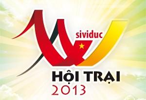 hoitrai20131
