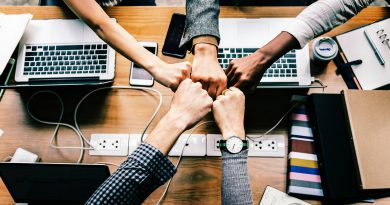 VSNE – Vietnam Startup Network in Europe