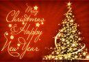 Lời Chúc Giáng Sinh từ SIVIDUC
